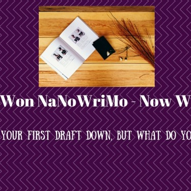 You Won NaNoWriMo - Now What?