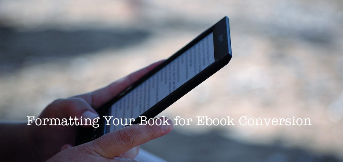 person holding ebook